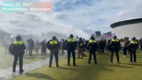 Dutch-Police-used-excessive-force-against-veterans-and-healthcare-workers.jpg