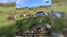 A farmer used his forklift truck to move and destroy